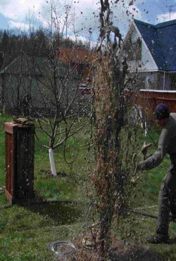 Фото промывка скважины