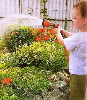 Для полива достаточно насоса малой или средней мощности