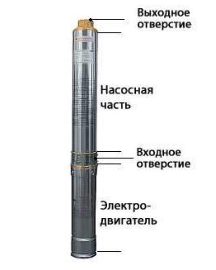 Конструкция насоса Беламос TF3-40