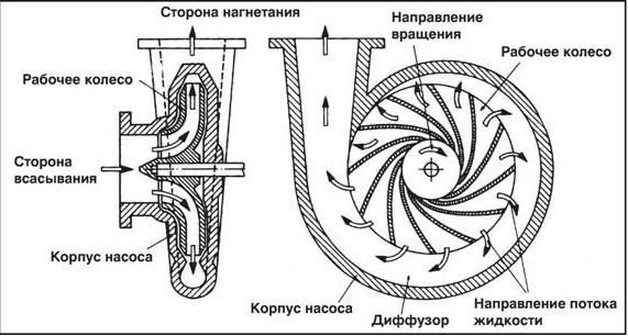 Элементарная схема устройства центробежного насоса