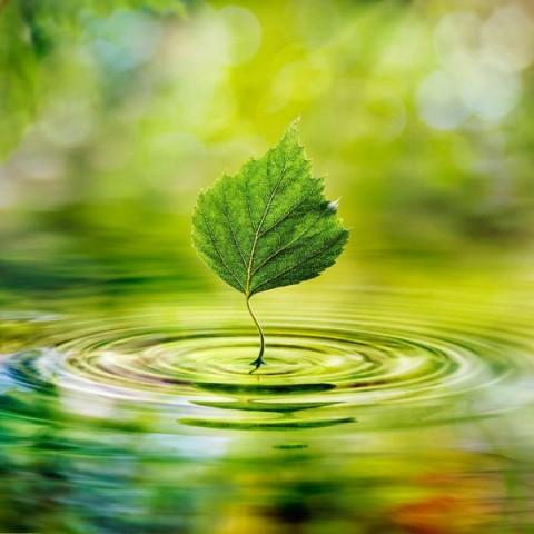 Вода – самый ценный природный ресурс