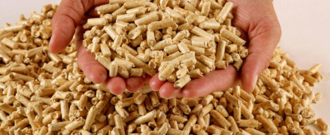 Пеллеты — дешевое топливо, производящееся их отходов деревообработки