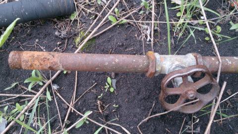 В летний водопровод вода для полива подается 2-3 раза в неделю