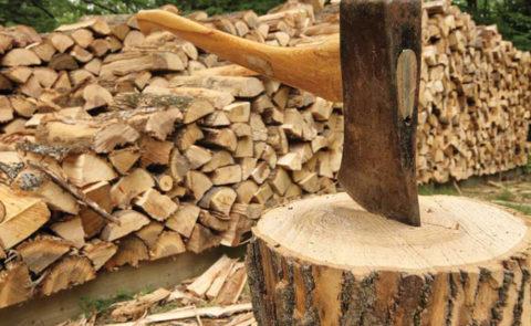 В 21 веке дрова остаются одним из наиболее доступных энергоносителей