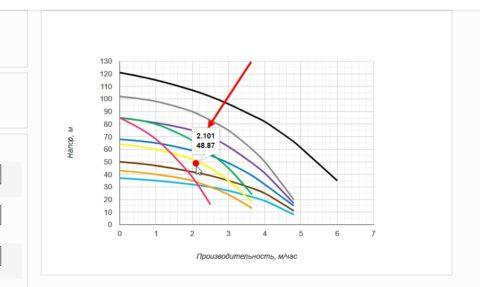 Стрелка указывает на подсказку с точными результатами
