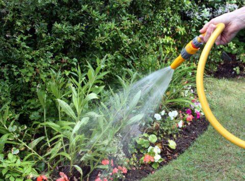 Правильная организация водоснабжения дачного участка облегчает жизнь