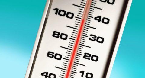 Термометр для измерений