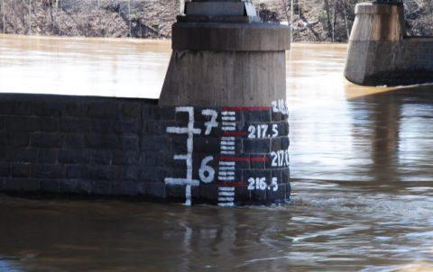 Уровень воды в пойме реки может значительно подниматься или снижаться